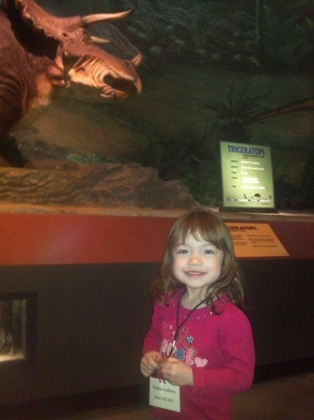 Looking at the Dinosaurs